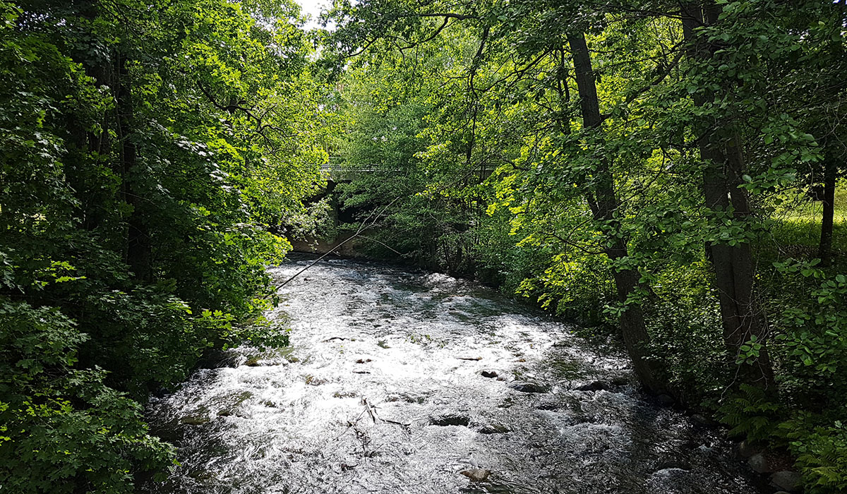 Jokimaisema Salossa. Kuvaaja Milla Aalto.